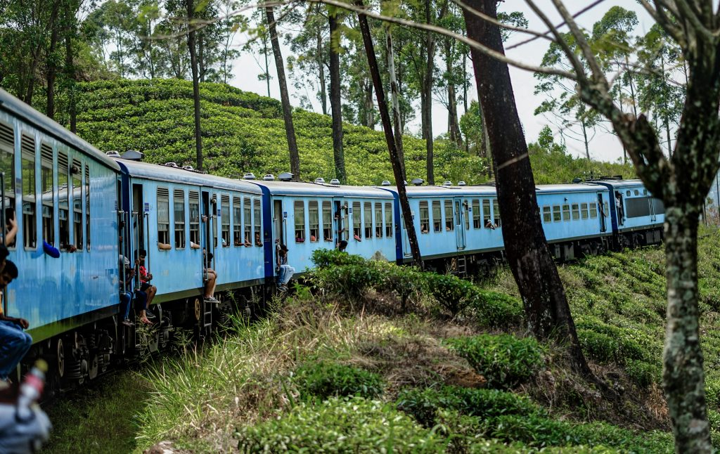 How to travel on Sri Lanka's most beautiful railway-the train in the tea fields