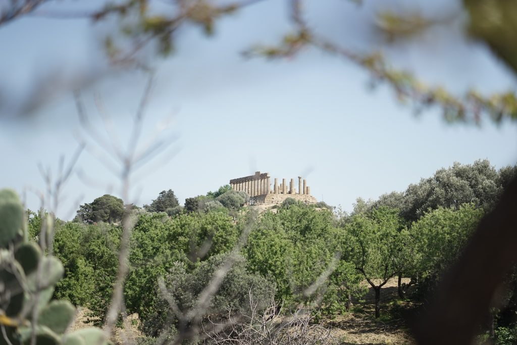 Valley of the temples, sicily-through the trees