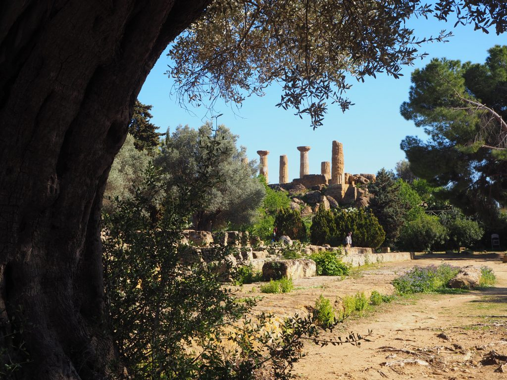 Valley of the temples in Sicily
