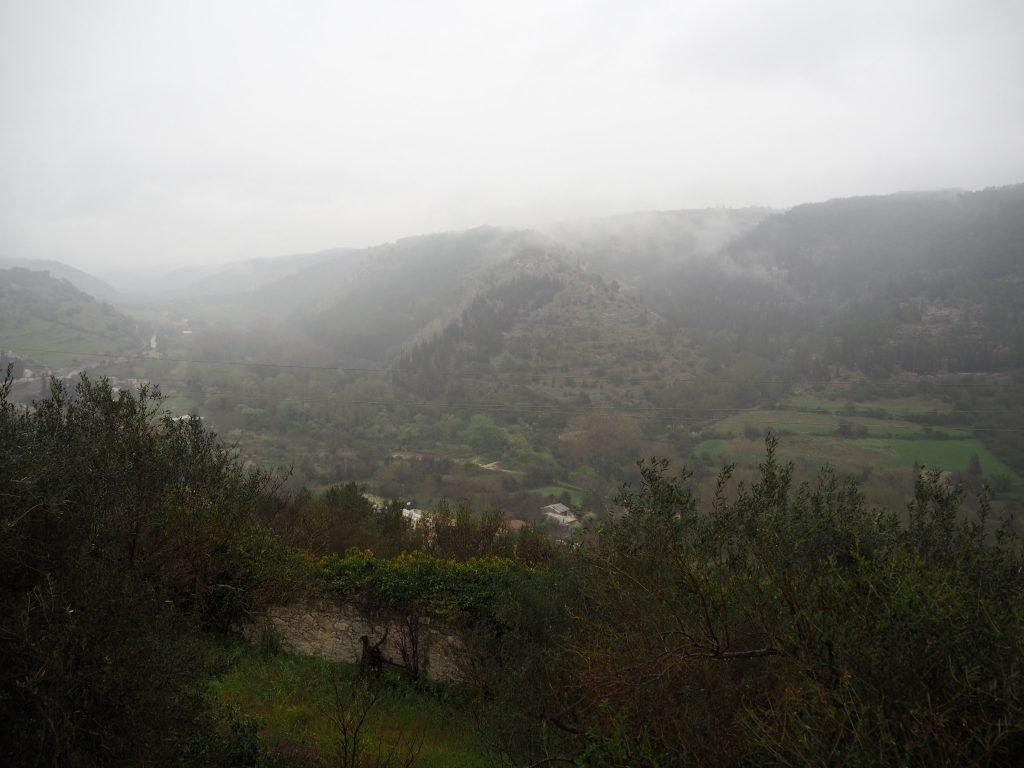 Misty views of the town garden
