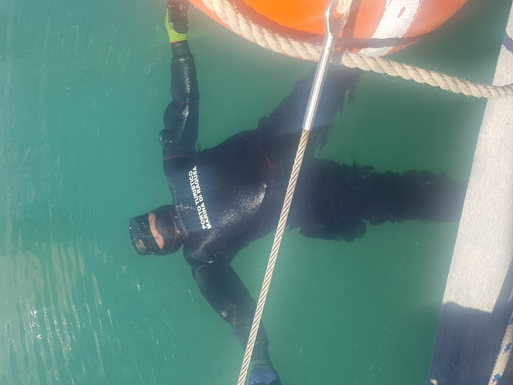 Diver in the water