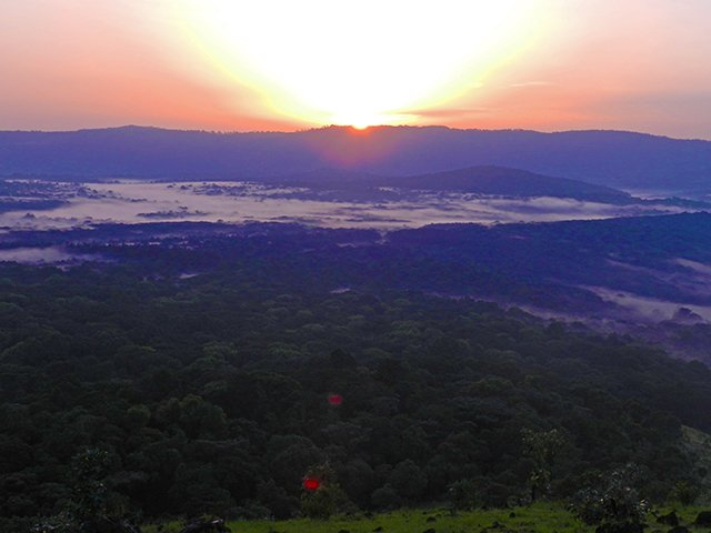 SUNRISE OVER THE KAKAMEGA RAINFOREST IN KENYA