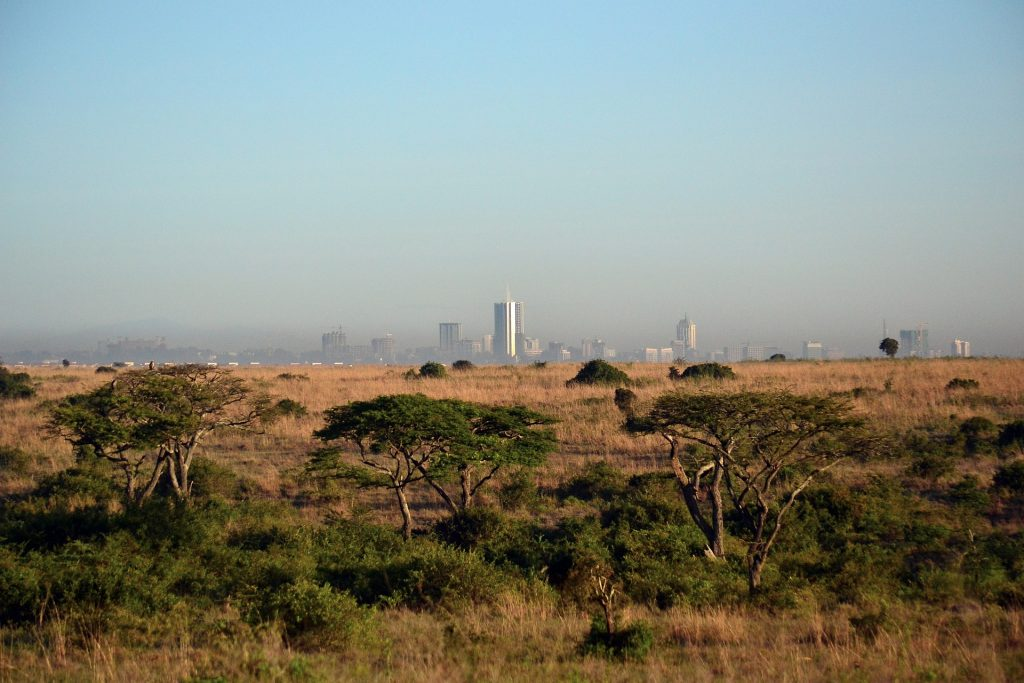 The view of Nairobi city from the national park