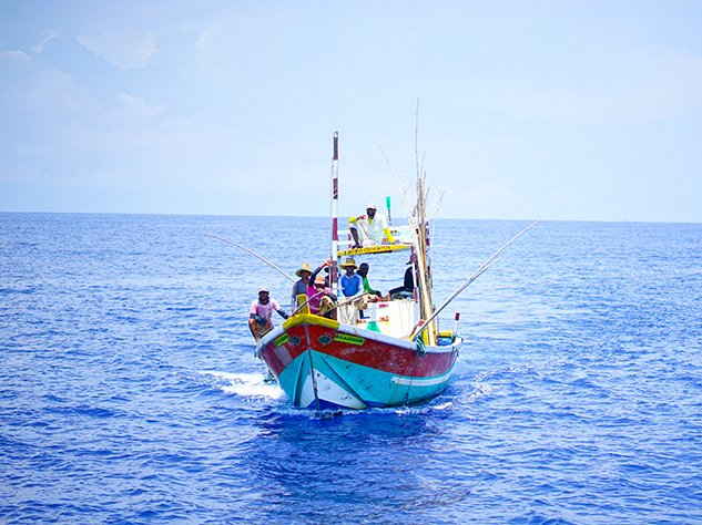 A brightly coloured fishing boat spotted on a whale watching trip from mirissa