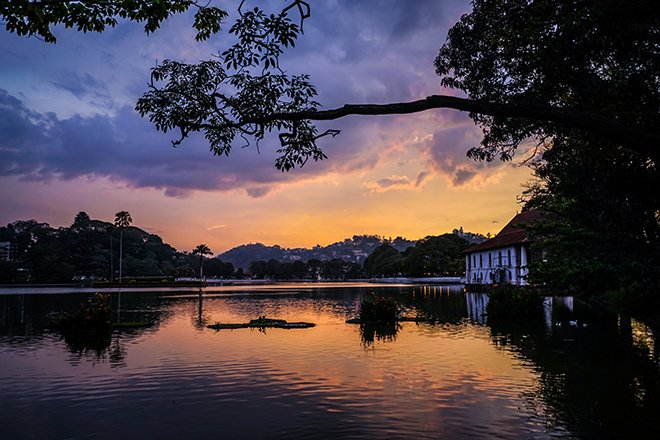 Kandy lake at sunset with a tree silhouette framing it