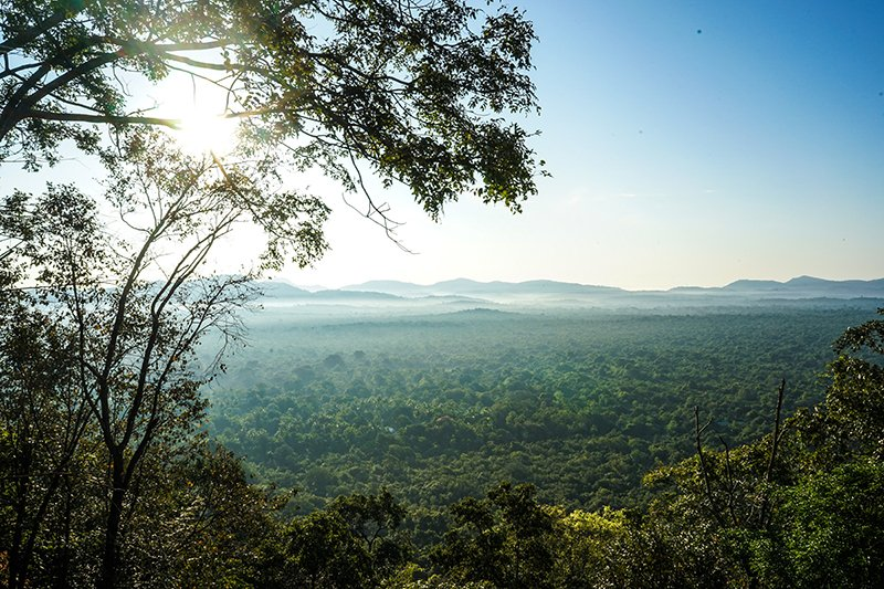 THE VIEW FROM PIDURANGALA ROCK