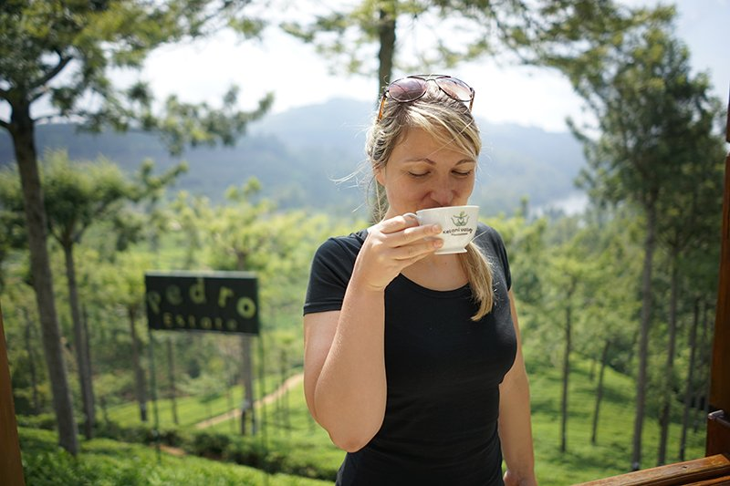 Drinking tea in pedro tea estate, Nuwara Eliya