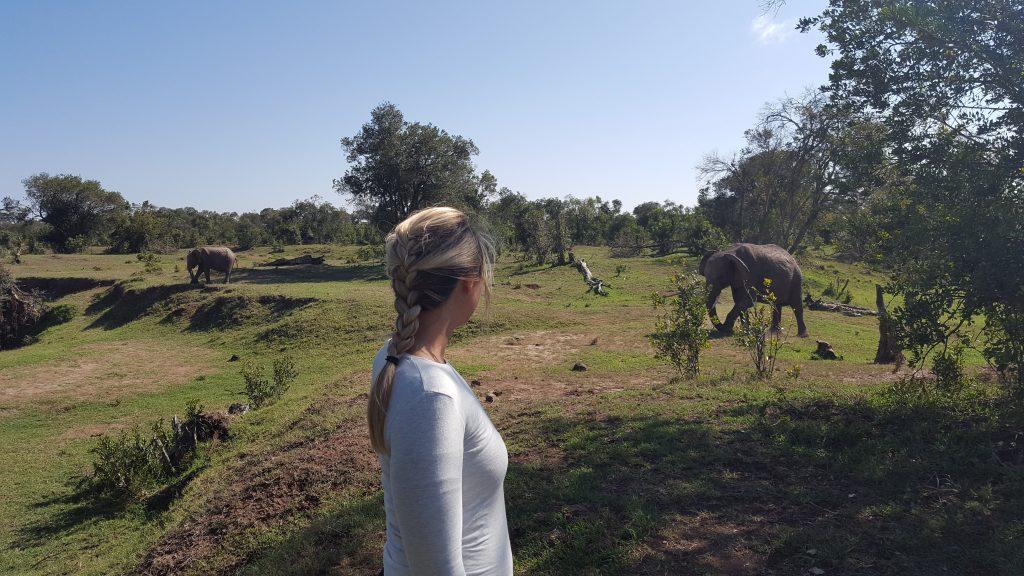 A GIRL STANDING BESIDE SOME WILD ELEPHANTS