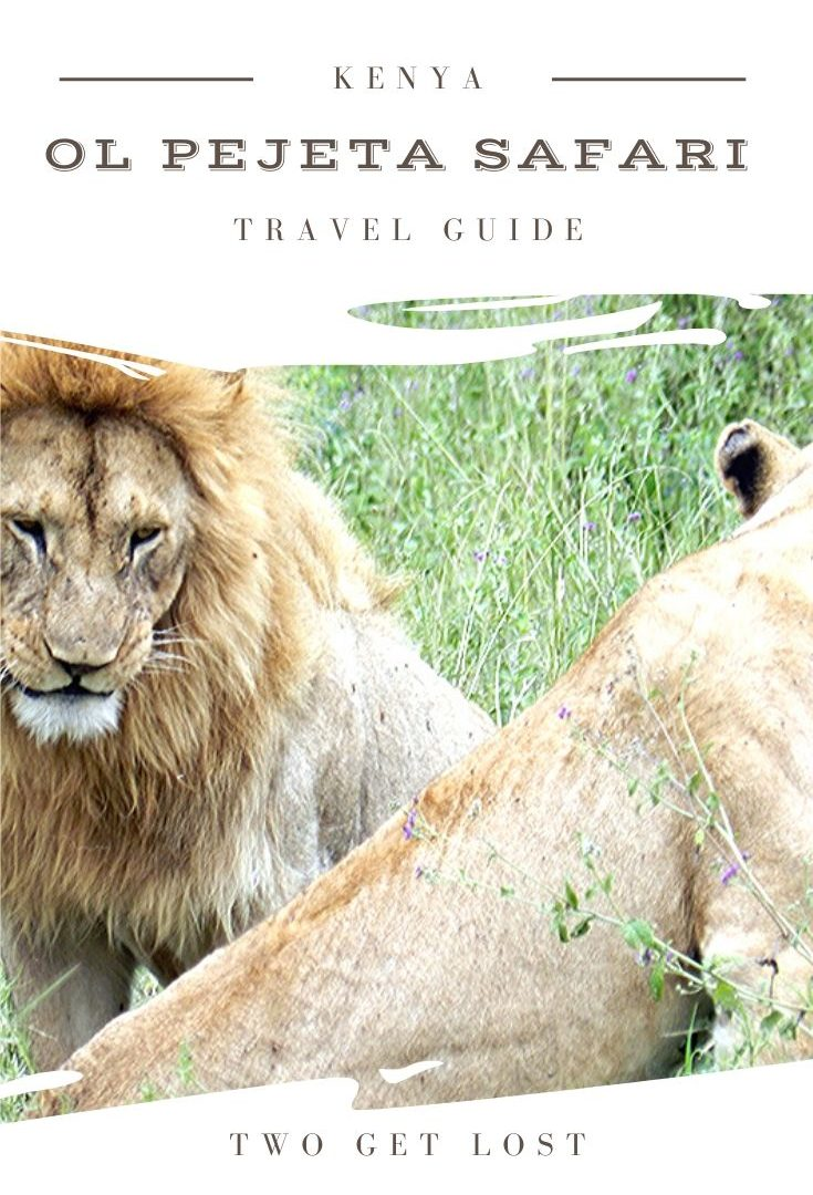 a pinterest pin for ol pejeta safari park in kenya