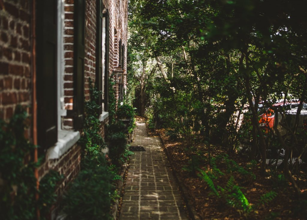 A shady lane discovered in 48 hours in Charleston SC