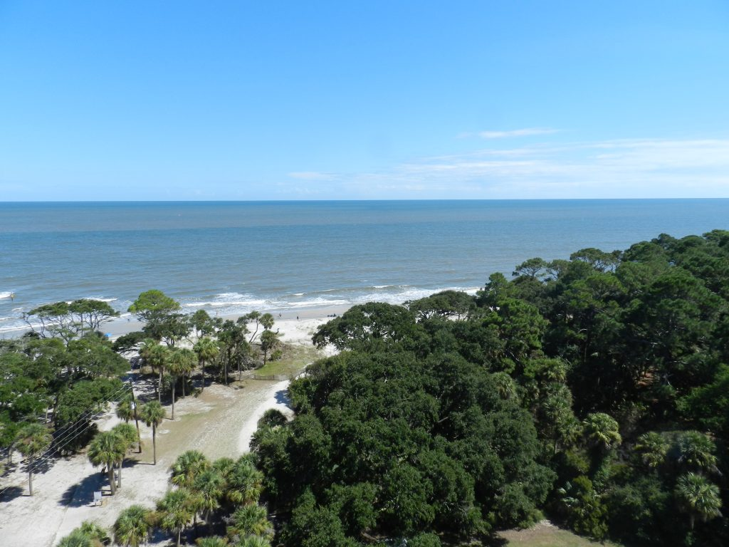 The view from hunting island state park lighthouse