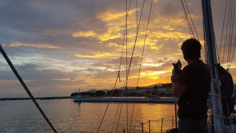 our cat on a sailboat with the sunset behind
