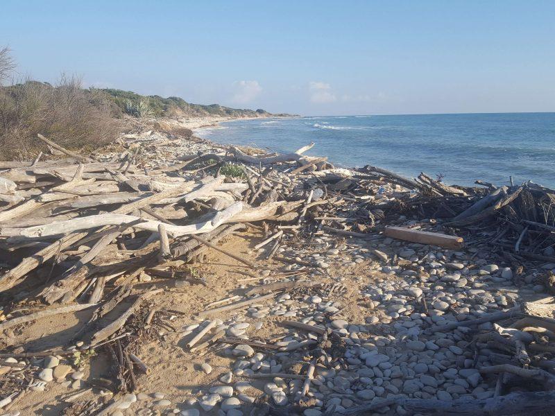the nature reserve in marina di ragusa over winter