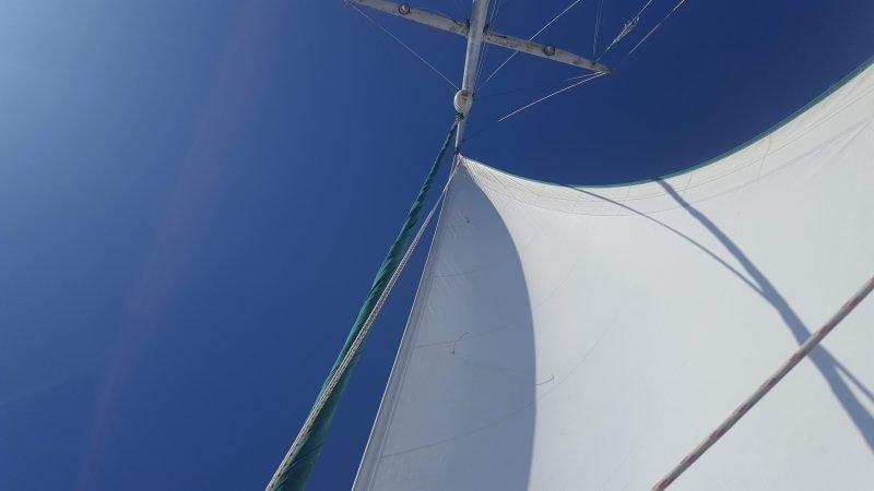 looking up at a sailboat sails