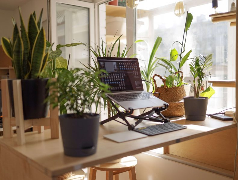 gifts for digital nomads for under $50 in the form of a laptop stand
