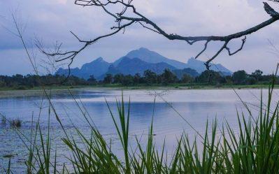 blue hazy mountains of sri lanka on an adventure trip away